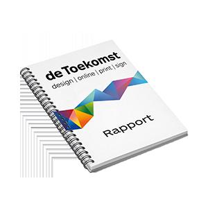 Rapporten-Uitgaves